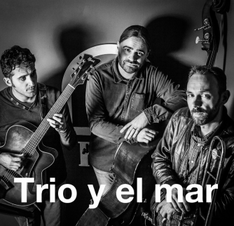 Trio y el mar, website tim band pagina foto